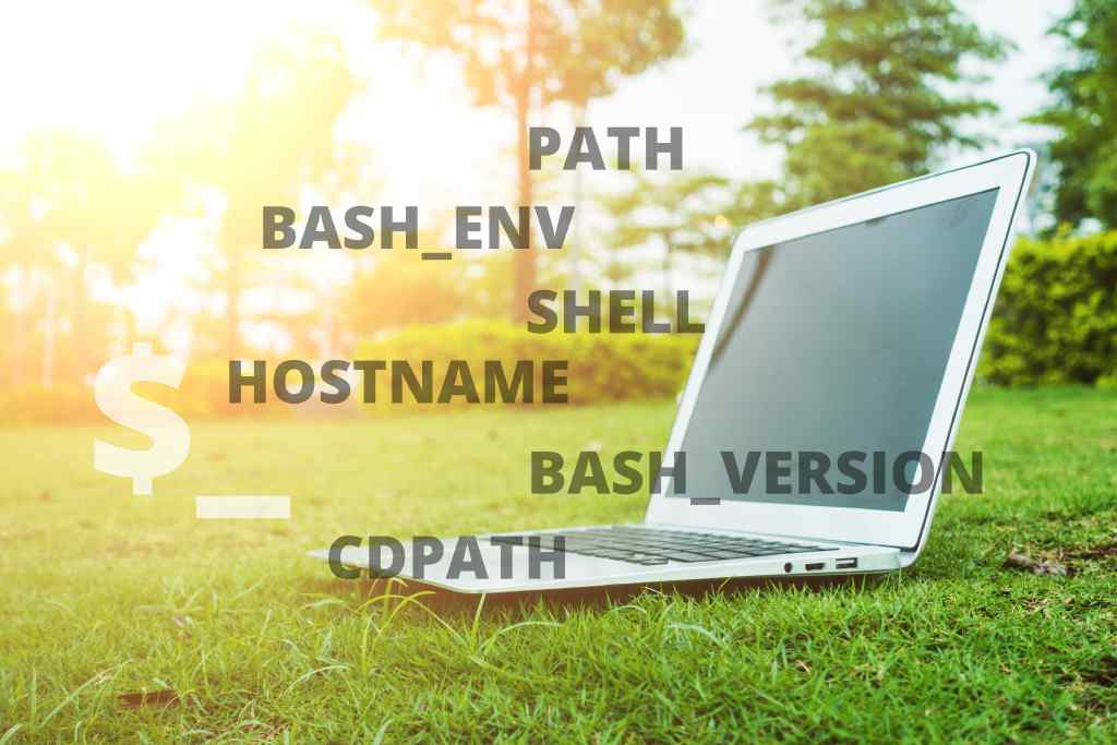 A Complete Guide to the Bash Environment Variables